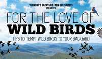 For the Love of Wild Birds - Poster